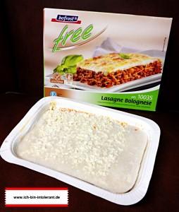lasagne-free02