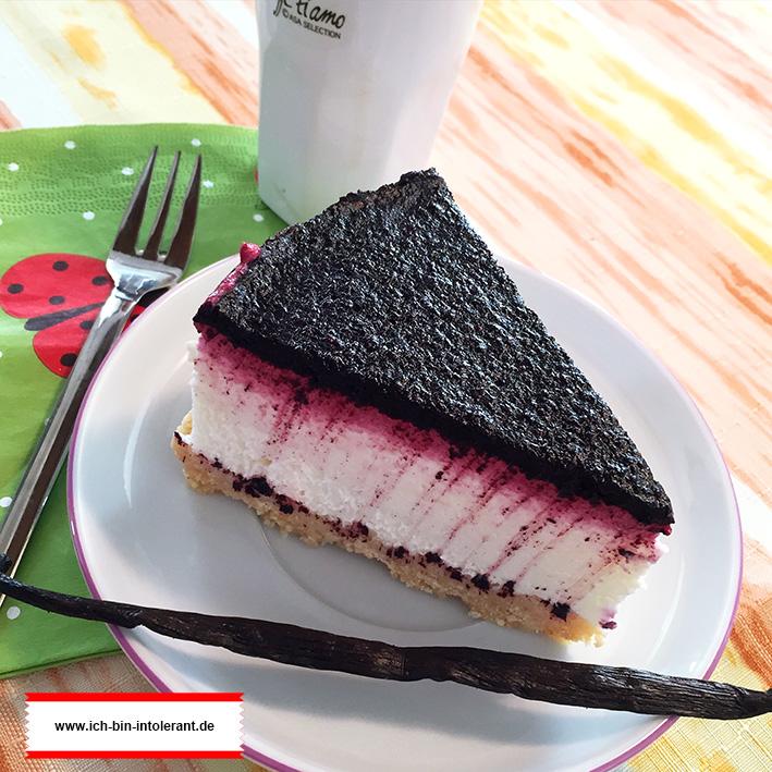 Blueberry Cheesecake glutenfrei und laktosefrei