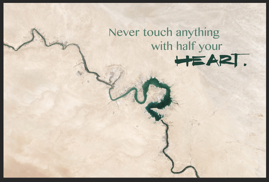 Never Touch Anything With Half Your Heart